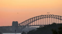 Sydney Harbour at dusk with chopper Stock Footage