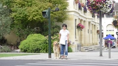 Senior blind woman crossing the street with help of guide dog - stock footage