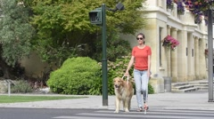 Blind woman crossing the street with help of guide dog - stock footage