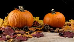 Decoration of pumpkins for thanksgiving day with autumn leaves on black backg Stock Photos
