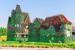 Dubai miracle garden with over million flowers Stock Photos