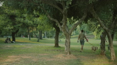 4K urban public park in Athens.Couple walking their dogs. Stock Footage