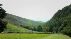 Welsh landscape dry stone walls on hillside Stock Footage