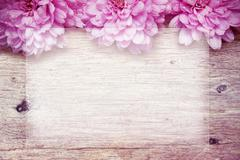 Pink flowers on wooden sparkle background Stock Photos