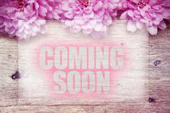 pink flowers on wooden with word Coming Soon - stock photo