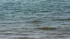 Background on the calm sea Stock Footage