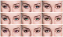 Colorful eyes collage close-up Stock Photos