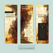 Gorgeous banner template set design Stock Illustration