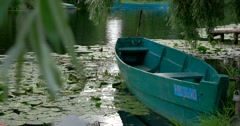 Weeping willow bent over a lonely boat, a Lily on the water, Pereslavl-Zalessky Stock Footage