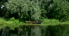 The  river, weeping willows reflected in the water, a solitary fishing boat Stock Footage