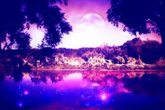 Night Forest and River Stock Illustration