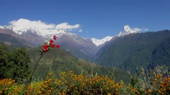 The Annapurna range in Nepal Stock Footage