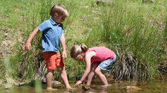Happy litle kids in river fishing tadpoles Stock Footage