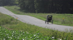 4K Horse Driven Carriage Ride On Road Past Lush Corn Fields Stock Footage
