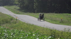 4K Horse Driven Buggy Drives On Road Past Lush Farm Fields Time Lapse Stock Footage