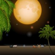 Tropical moonlight over sandy beach Stock Illustration
