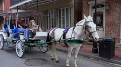 Sightseeing tour by Horse drawn cab in New Orleans French Quarter Stock Footage