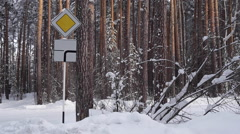 Road Sign a Priority Road in Snowy Forest Stock Footage