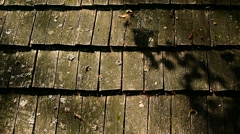 Weathered wooden roof tiles detail video Stock Footage