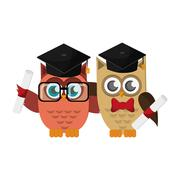 Owl cartoon with graduation cap and diploma icon Stock Illustration