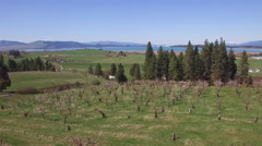Aerial Zoom Over Cherry Orchard To Flathead Lake Reveal Stock Footage