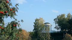 A typical park in Russia Stock Footage