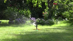 Sprinkler watering tool spray water drops squirt on garden lawn and flowers. 4K Stock Footage