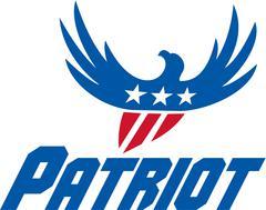 American Eagle Flying USA Flag Patriot Retro Piirros