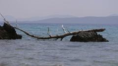 Beautiful seascape. Nature composition. Stock Footage