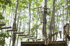 Tree top adventure park Stock Photos