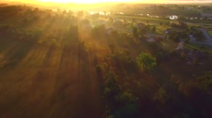 Ethereal foggy sunrise with sunbeams through treetops Stock Footage