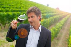 Portrait confidant vintner drinking red wine in winery Stock Photos