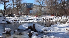 Pan of Ducks Floating In Stream Outside The Boulder, Colorado Public Library Stock Footage
