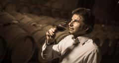Portrait confidant vintner drinking red wine in winery - stock photo