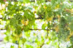 Raindrops on window pane of country house Stock Photos