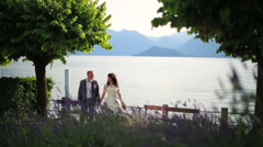 Bride and groom lovingly look at each other at the lake Stock Footage