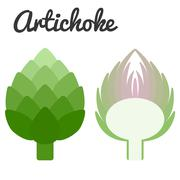 Vector cross section artichoke, flat design with text Stock Illustration