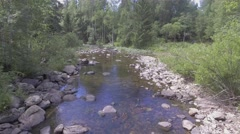 River in the forest Stock Footage