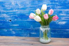 Colorful tulips flowers on blue wooden desk table background. Copy space - stock photo