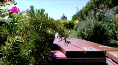 View from the park bench decorated with flowers and plants. Stock Footage