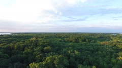 Aerial View of Pure Forest Abundance (Western Shore of Montreal, Canada) Stock Footage