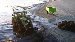 Tractor removes algae on coast of Baltic Sea Stock Footage