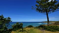 Australia tree and ocean at Kianga Stock Footage