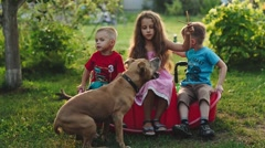 Children Feed and Pat the Dogs in the Garden Stock Footage