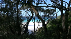 Australia Hyams Beach at Jervis Bay through trees Stock Footage