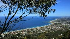 Australia Illawarra Escarpment tree over Wollongong Stock Footage