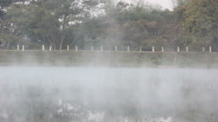 Morning mist flows over marsh grasses on a pond in Thailand. Stock Footage