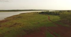 Cows walking on a clearing at the edge of a lake in Africa. Aerial video, N. Stock Footage