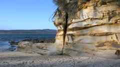 Australia Murramarang beach sandstone Stock Footage
