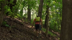 Hiker with green backpack walking in mountainous forest. 4K steadicam video Stock Footage